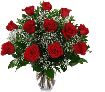 Dozen Red Roses Vased in Lower Sackville NS, 4 Seasons Florist