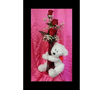 Bear Hugs in Fincastle VA, Cahoon's Florist and Gifts