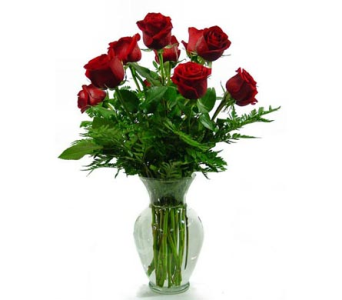 Classic Dozen Roses in Amherst NY, The Trillium's Courtyard Florist