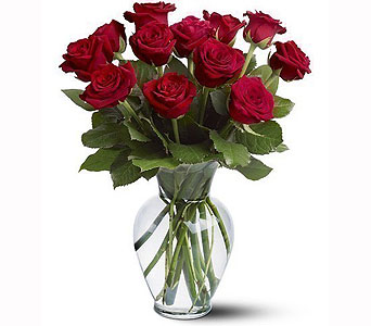 One dozen red roses in Bellevue WA, CITY FLOWERS, INC.
