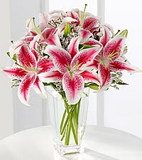 Stargazer lilies Bouquet in Round Rock TX, Heart & Home Flowers