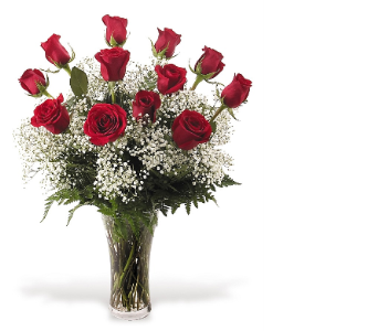 Dozen roses arrangement in Sanford FL, Sanford Flower Shop, Inc.