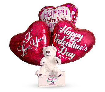 Valentine's Day Balloons Chocolates and Teddy Bear in Oshkosh WI, House of Flowers