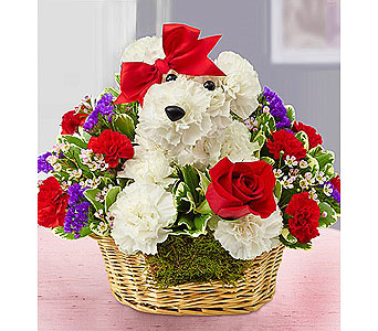 Love Pup in Grand Rapids MI, Rose Bowl Floral & Gifts