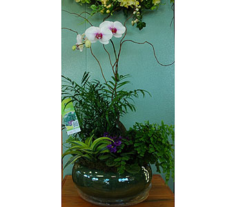 Planter in Northfield MN, Forget-Me-Not Florist