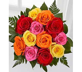 Dozen Mix Colour Roses in Brampton ON, Flower Delight
