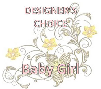 Designer's Choice Baby Girl in Sugar Land TX, Nora Anne's Flower Shoppe