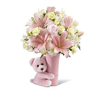 Baby Girl Big Hug Bouquet in Metairie LA, Nosegay's Bouquet Boutique