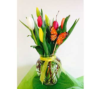 Vased Tulips in Fredericton NB, Trites Flower Shop