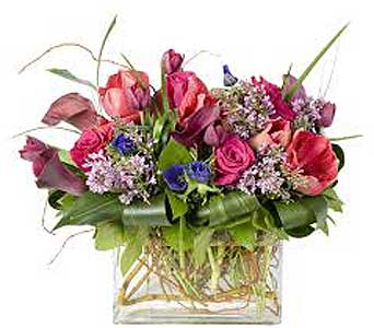 Flowers delivery san antonio tx allens flowers gifts custom in san antonio tx allens flowers gifts negle Image collections