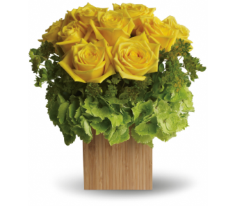 Box of Sunshine in Clearwater FL, Hassell Florist