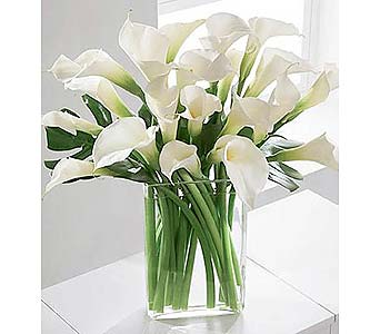 Calla Lillies in San Antonio TX, Allen's Flowers & Gifts