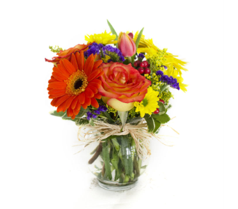 Burst of Joy in Nashville TN, Emma's Flowers & Gifts, Inc.