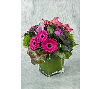 Purple, Fuchsia and Green Arrangement in Great Neck NY, United Floral