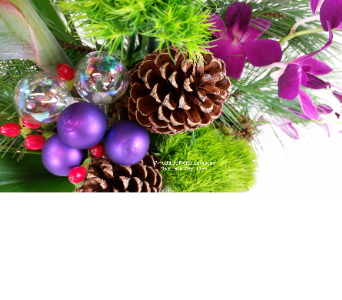 Christmas Blooms at Huddart Floral in Salt Lake City UT, Huddart Floral