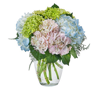 Southern Charm in Spartanburg SC, A-Arrangement Florist