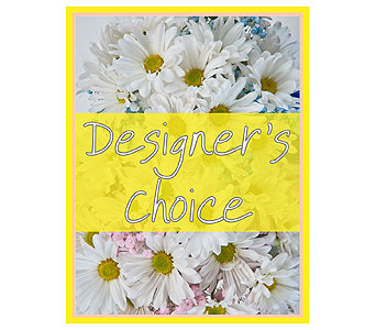 Designer's Choice - New Baby in Champaign IL, April's Florist