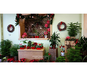 Christmas at Huddart Floral Company in Salt Lake City UT, Huddart Floral