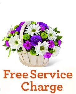 Springtime Delights  - FREE DELIVERY in Cohasset MA, ExoticFlowers.biz