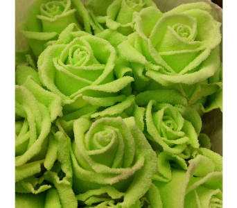 GLOW IN THE DARK ROSES in Boston MA, Exotic Flowers