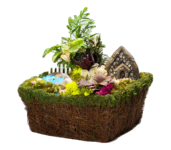 Fairy Garden in a Basket in Waterbury CT, The Orchid Florist