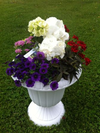 Outdoor Blooming Garden in Quakertown PA, Tropic-Ardens, Inc.