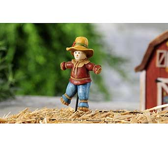 Mini World Garden Country Scarecrow Design Stake in Guelph ON, Patti's Flower Boutique