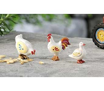 Mini World Garden Country Hen, Rooster & Duck Deco in Guelph ON, Patti's Flower Boutique