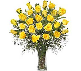 Yellow Roses  in Norwood PA, Norwood Florists