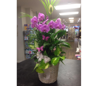 CD9 in Bradford ON, Linda's Floral Designs