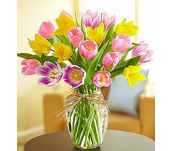 Timeless Tulips 20 Stems in Palm Desert CA, Milan's Flowers & Gifts