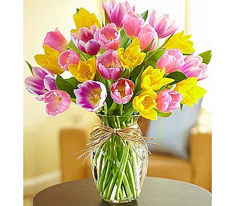 Timeless Tulips 25 Stems in Palm Desert CA, Milan's Flowers & Gifts