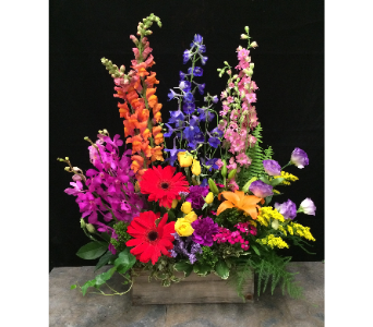 Vibrant garden style in Wellington FL, Wellington Florist