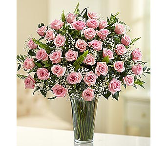Long Stem Pink Roses 36 Stems in Palm Desert CA, Milan's Flowers & Gifts