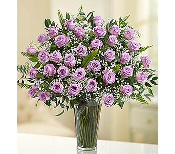 Long Stem Purple Roses 36 Stems in Palm Desert CA, Milan's Flowers & Gifts