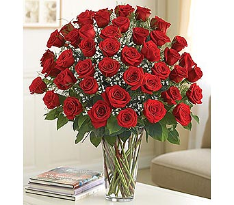 Long Stem Red Roses 48 Stems in Palm Desert CA, Milan's Flowers & Gifts