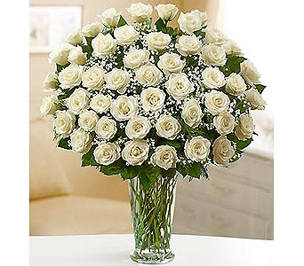 Long Stem White Roses 48 Stems in Palm Desert CA, Milan's Flowers & Gifts