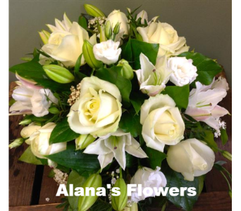 Roses&Lily in Etobicoke ON, Alana's Flowers & Gifts