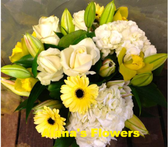 Ray Of Sunshine in Etobicoke ON, Alana's Flowers & Gifts