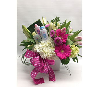 Baby girl in Quincy MA, Fabiano Florist