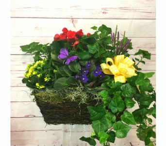 Medium European Garden in Wellington FL, Wellington Florist