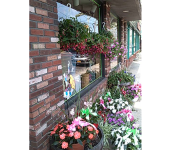 flowering plants in Bellmore NY, Petite Florist