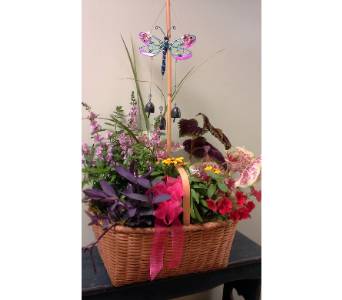 Blooming Melody Basket in Fairless Hills PA, Flowers By Jennie-Lynne