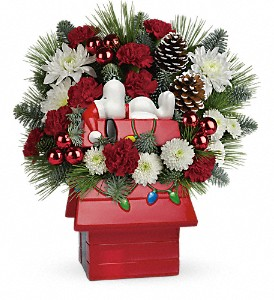 Snoopy's Cookie Jar by Teleflora in San Antonio TX, Allen's Flowers & Gifts