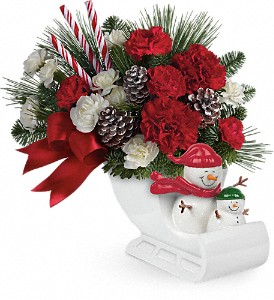 Send a Hug Open Sleigh Ride by Teleflora in Cornwall ON, Fleuriste Roy Florist, Ltd.