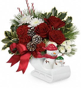 Send a Hug Snow Much Fun by Teleflora in Sylmar CA, Saint Germain Flowers Inc.