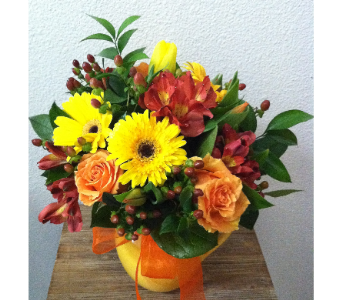 Citrus Summer in Arcata CA, Country Living Florist & Fine Gifts