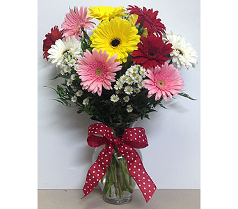 Dozen Assorted Large Gerbera in Wyoming MI, Wyoming Stuyvesant Floral