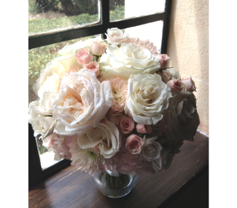 BLush Garden Roses U0026 Spray Roses W/hydra. U0026 Mums In Sarasota FL,