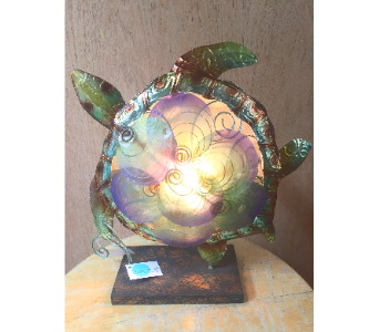 Turtle Light in Santa Cruz CA, Shay's Flowers